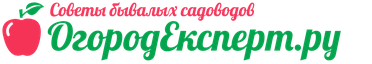 Логотип сайта OgorodExpert.ru – cоветы и рекомендации экспертов, по земледелию, фермерству и птицеводству