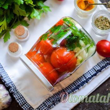 заготовка из томатов