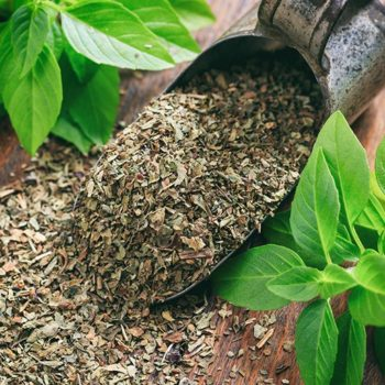 Базилик сушеный: применение, полезные свойства, как сушить в домашних условиях